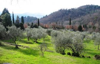 FIES02 - Villa bei Fiesole - Ausblick