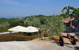 ANTI01 - Agriturismo im Chianti - 11