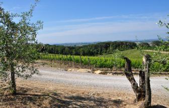 ANTI01 - Agriturismo im Chianti - 9