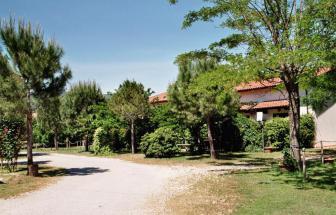 PARC01 - Bio-Weingut im Parco della Maremma - Einfahrt