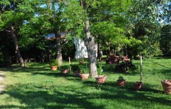 PARC01 - Bio-Weingut im Parco della Maremma - Garten b