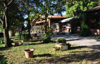 PARC01 - Bio-Weingut im Parco della Maremma - Garten