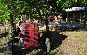 PARC01 - Bio-Weingut im Parco della Maremma - Traktor