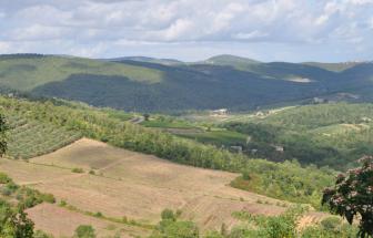 Burg_Gaiole (2)