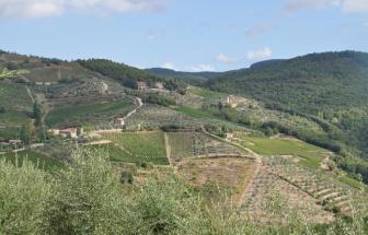 Burg_Gaiole (10)