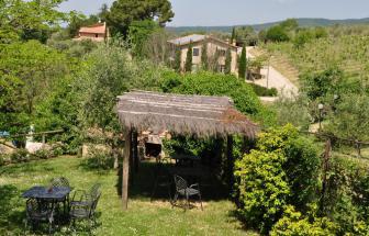 Canaiolo (1)