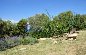 Case Nuove bei Talamone - Garten