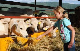 MURL01 - Kleine Ferienanlage bei Murlo - Kinderprogramm 2