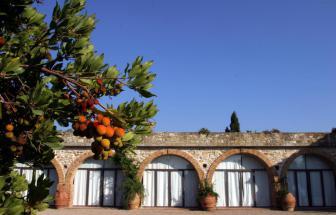 MANC01 - Bio-Gutshof bei Manciano - Restaurant