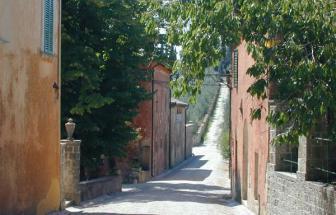 SOVI01 - Agriturismo bei Sovicille - Viale