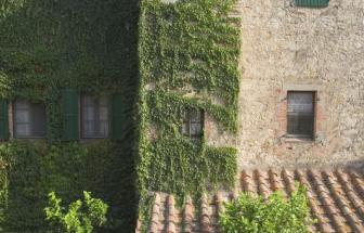ROST01 - Olivenöl-Mühle bei Roccastrada - aussen