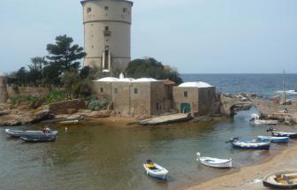 Giglio Campese - Blick auf den Torre