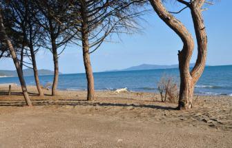 PARC03 - Podere Vergheria im Naturpark - Strand