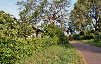 PARC03 - Podere Vergheria im Naturpark - Weg