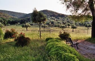 PARC03 - Podere Vergheria im Naturpark - Blick