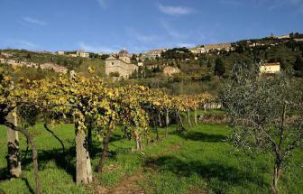 CORT09 - Villa Fontocchio bei Cortona - Blick