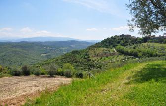 CAMP02 - Villa Guardia bei Campagnatico - 86