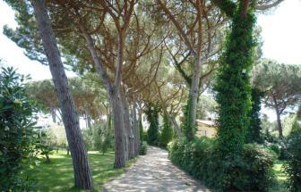 MABI01 - Villa in Marina di Bibbona - 6