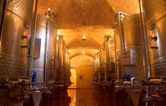 BOLG01 - Weingut in Bolgheri - Cantina