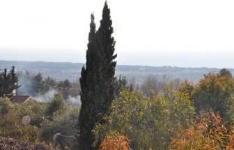 SAVI01 - Bio-Agriturismo bei San Vincenzo - Blick Meer