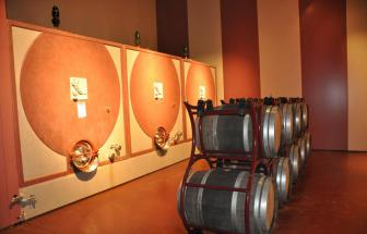 MAMA01 - Weingut bei Massa Marittima - Cantina innen