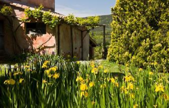 SOVI01 - Agriturismo bei Sovicille - Garten
