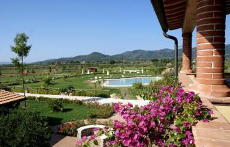 SUVE02 - Weingut bei Suvereto - Blumen