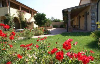 SUVE02 - Weingut bei Suvereto - Garten