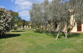 CECI01 - Kleine Ferienanlage bei Cecina - Garten b
