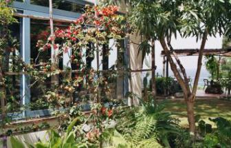 ELBA01 - Elba Hotel in Sant´Andrea - Garten 5