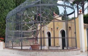 CAMP01 - Herrschaftliche Villa in Campagnatico - 10