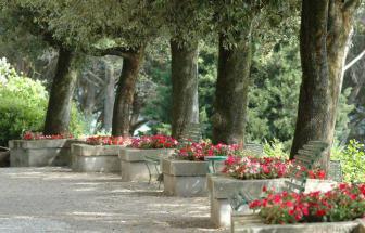 CORT06 - Villa Le Contesse bei Cortona - Garten