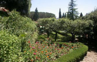 CORT06 - Villa Le Contesse bei Cortona - Garten 2