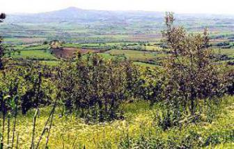 Sprachreise in die Maremma - Blick von Campagnatico